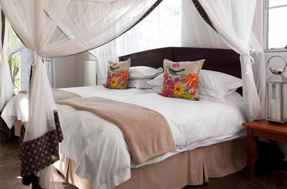 Twin room accommodation offered at Djuma Galago Camp.