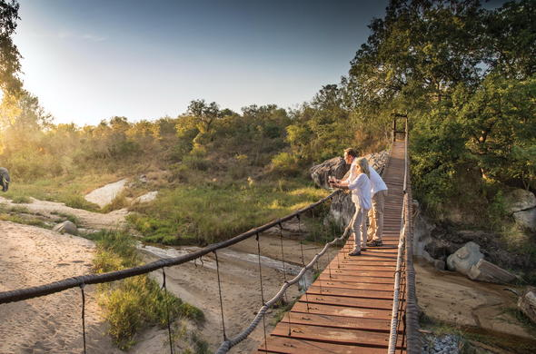 Game viewing from the suspension bridge at Dulini Lodge.