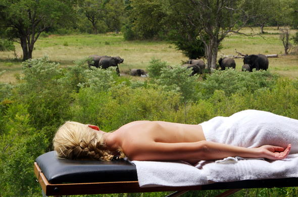 Enjoy spa treatments while watching game at the waterhole.