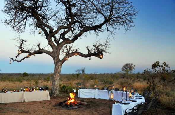Dinner served in the African bush.