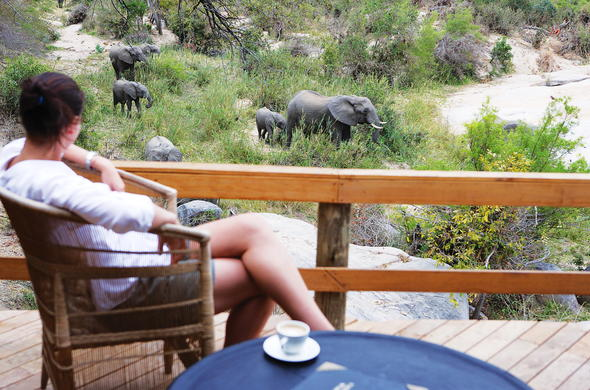 Watch the roaming wildlife from your private game viewing deck.