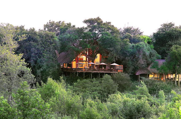 Londolozi Varty Camp is tucked away behind lush trees.