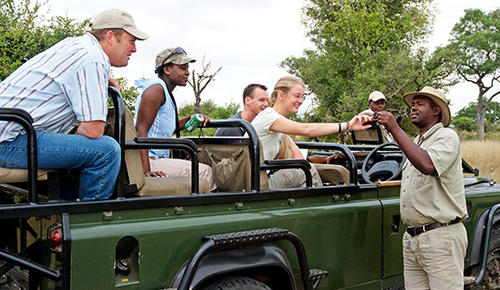 Guests on a game drive at Nottens Camp in Sabi Sands.