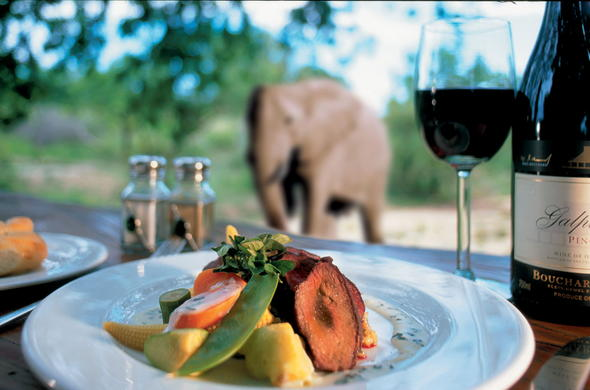 Ulusaba Safari Lodge dining with view of Elephant.