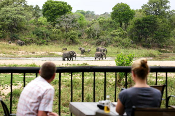 Guests watching elephant from the Umkumbe Safari Lodge deck.